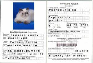 Ветеринарный документ интернационального примера
